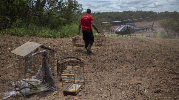 Спасатель на месте прорыва плотины в Брумадинью, Бразилия