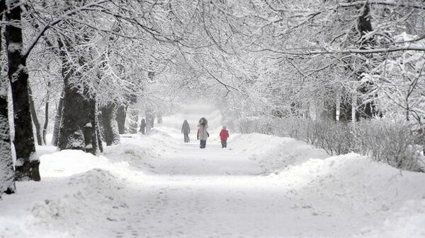 Снег в Москве. 13 февраля 2019