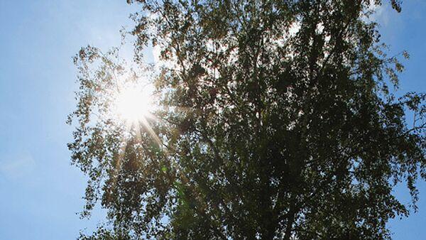 Рекорд тепла побит в чукотской столице