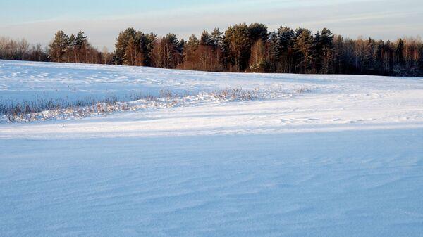 В Гидрометцентре опровергли популярную примету о морозной зиме