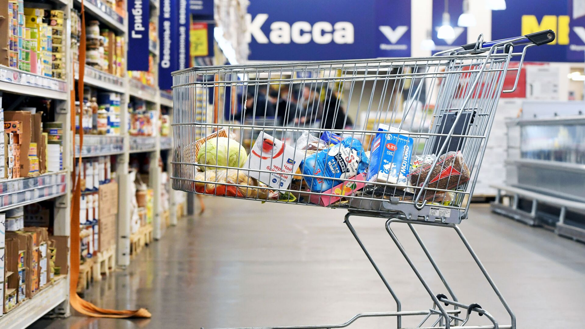 Тележка с продуктами в супермаркете - РИА Новости, 1920, 03.06.2021