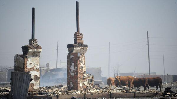 Последствия пожара в селе Усть-Ималка Ононского района Забайкальского края