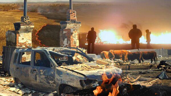 Ад на земле. Пожары в Забайкалье полностью уничтожили несколько сел