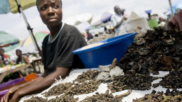 Продавец съедобных насекомых не рынке