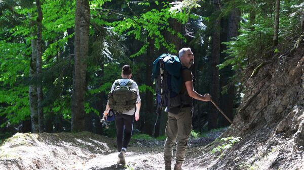 Туристы на прогулке в лесу. Архивное фото