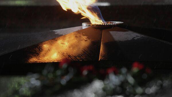 Вечный огонь в Парке Победы