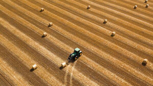 Сельскохозяйственные работы в Краснодарском крае