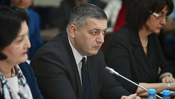 Депутат парламента Грузии от оппозиционной фракции Альянс патриотов Георгий Ломия