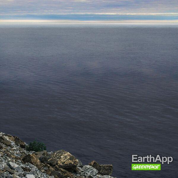 Фото, опубликованное Greenpeace России в рамках проекта EarthApp