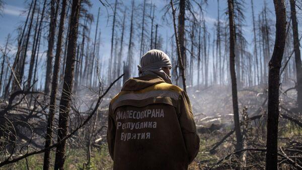 Тушение природного лесного пожара в Бурятии