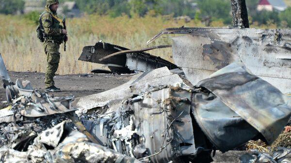 Место крушения малайзийского Boeing 777 в Донецкой области