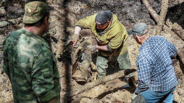 Международная поисковая экспедиция стартовала в Ленинградской области