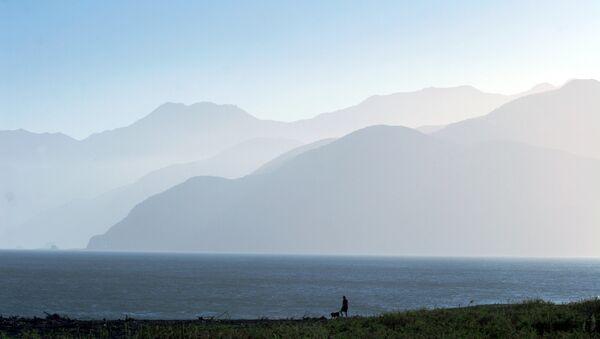 Новая Зеландия, на побережье Тихого Океана. Архивное фото