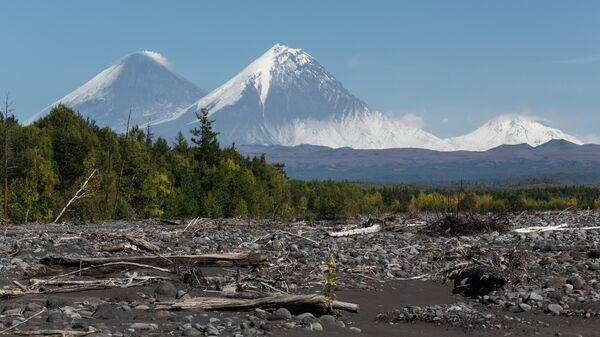 Вид на вулканы Ключевской, Камень и Безымянный с русла реки Студеной на Камчатке