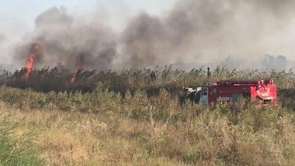 В Ростовской области горит сухостой