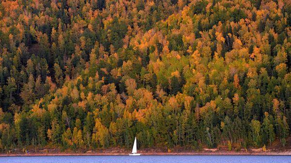 Парусная яхта на Красноярском водохранилище
