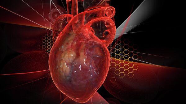 Человеческое сердце с ЭКГ