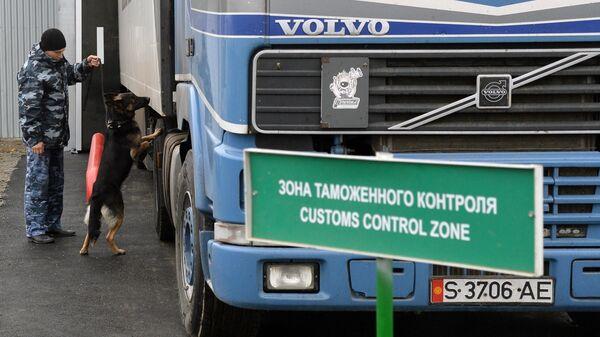 Сотрудник таможенной службы РФ с собакой осуществляет досмотр автомобиля на контрольно-пропускном пункте Бугристое российско-казахстанской границы