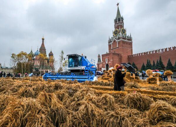 Фестиваль Золотая осень на Красной площади в Москве