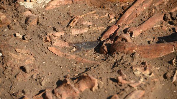 Кремневый наконечник стрелы на подвздошных костях погребенного