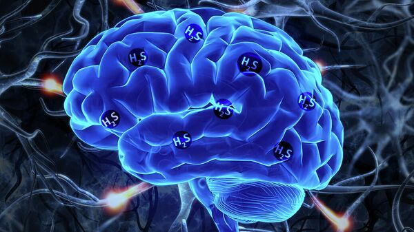 Экспрессия гена MPST, которая приводит к выработке сероводорода, является признаком шизофрении