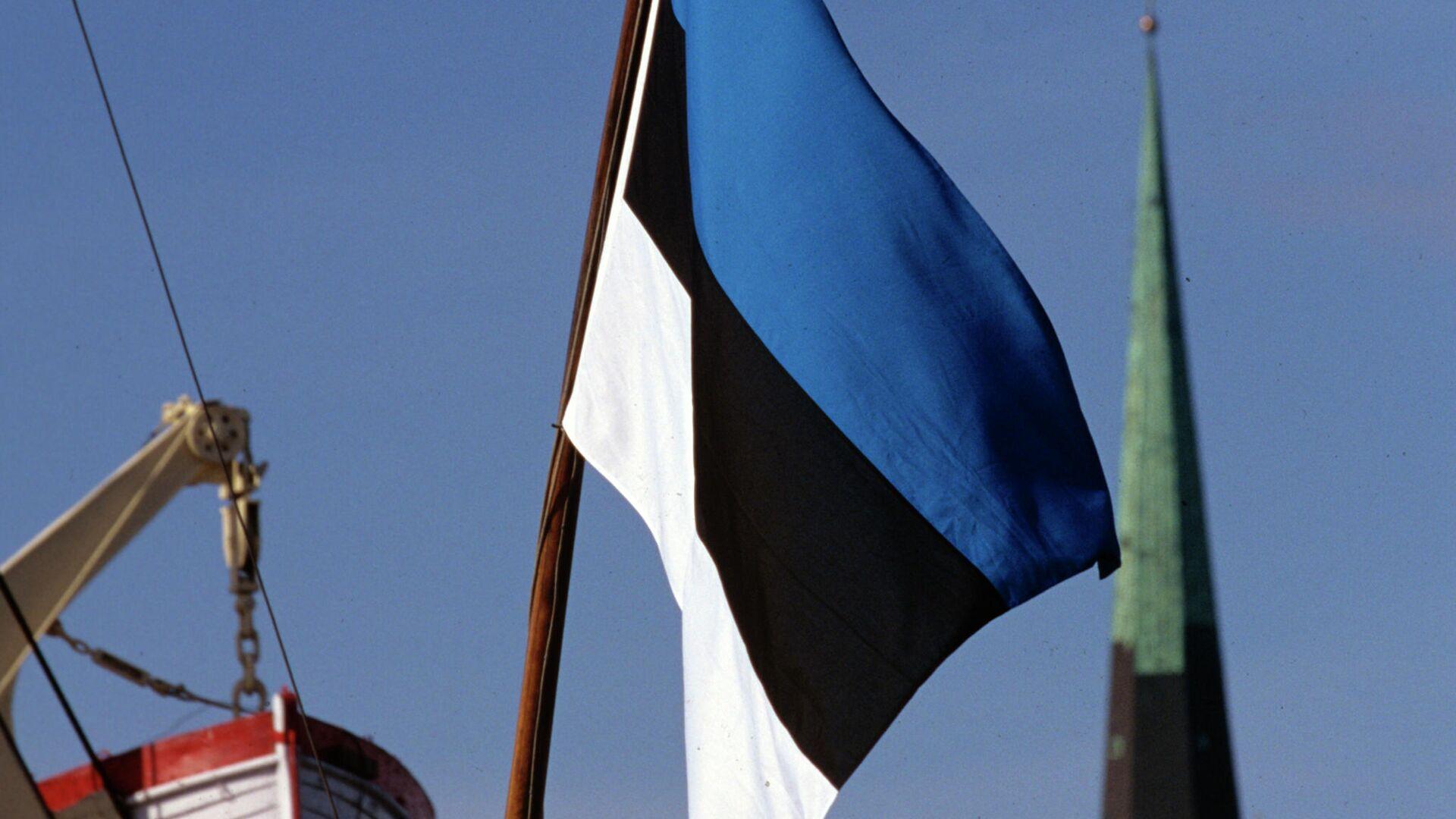 Государственный флаг Эстонии  - РИА Новости, 1920, 19.02.2021