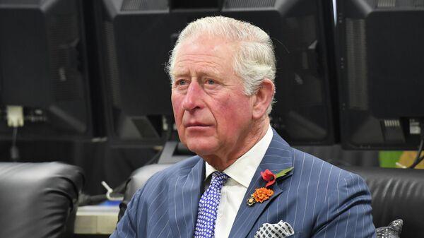 Британский принц Чарльз в Индии. 13 ноября 2019