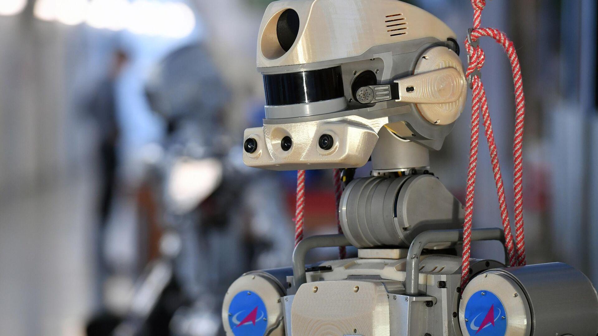 Антропоморфный робот SKYBOT F-850 Фёдор, представленный на XIII Международной научно-практической конференции Пилотируемые полёты в космос - РИА Новости, 1920, 11.10.2020