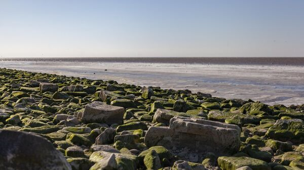 Отлив на Азовском море