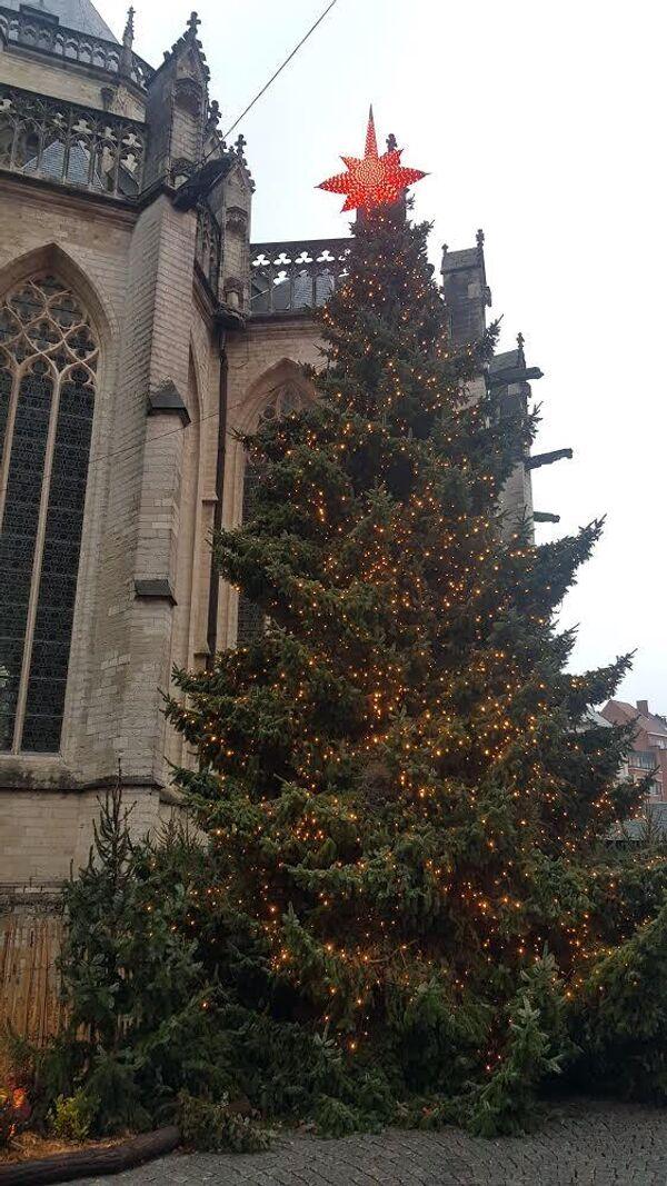 Рождественская ель на центральной площади города Левен (Бельгия).