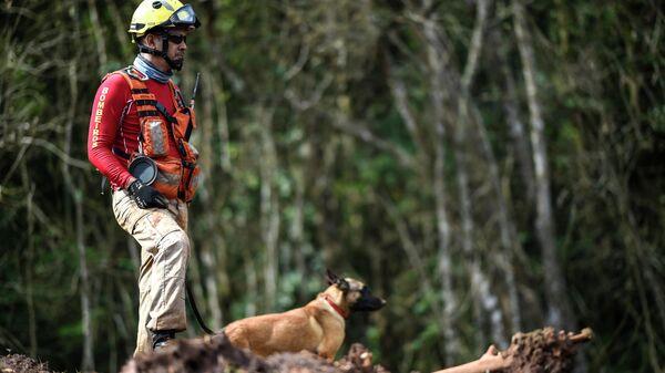 Сотрудник пожарной службы Бразилии с собакой