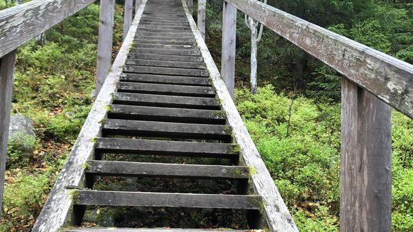 6 причин поехать на Соловецкие острова. В монастырь, но не только