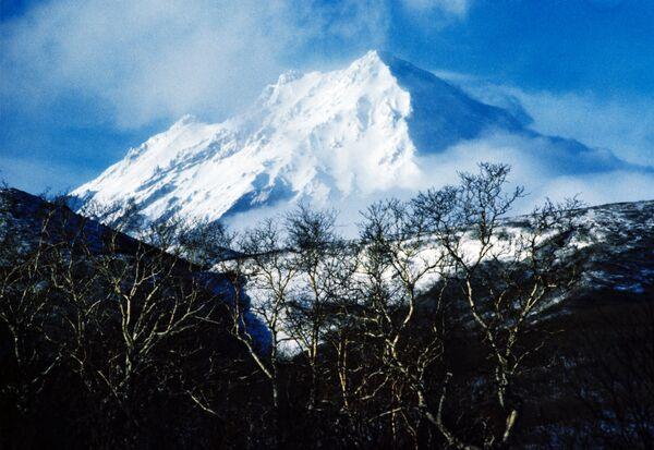 Шлейф пепла от извержения вулкана Корякский протянулся на 200 км
