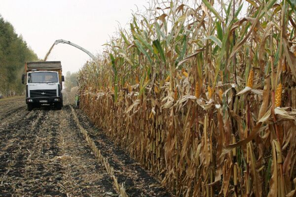 Эксперименты в сельском хозяйстве вчера и сегодня