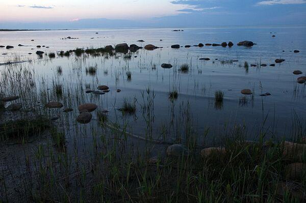 Соленые озера могли быть причиной вымирания древней фауны - ученые