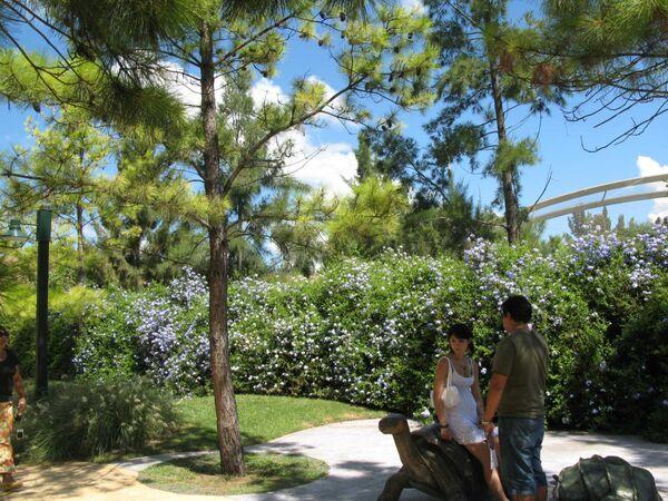 Парк-заповедник Темайкен в окрестностях Буэнос-Айреса