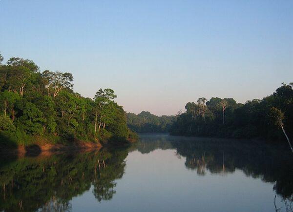 Амазонка. Архивное фото