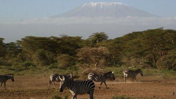 Сафари в Кении входит в десятку лучших экологических маршрутов для путешественника