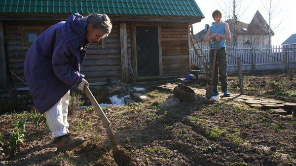 Дачники в Московской области. Архивное фото