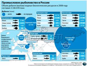 Промысловое рыболовство в России
