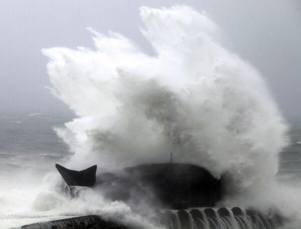 Тайфун Моракот бушует в Тайване