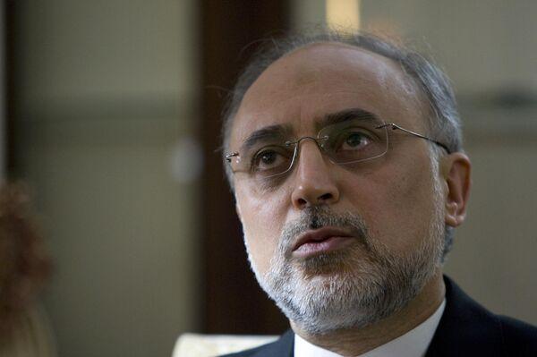 Руководитель Организации по атомной энергии Ирана Али Акбар Салехи