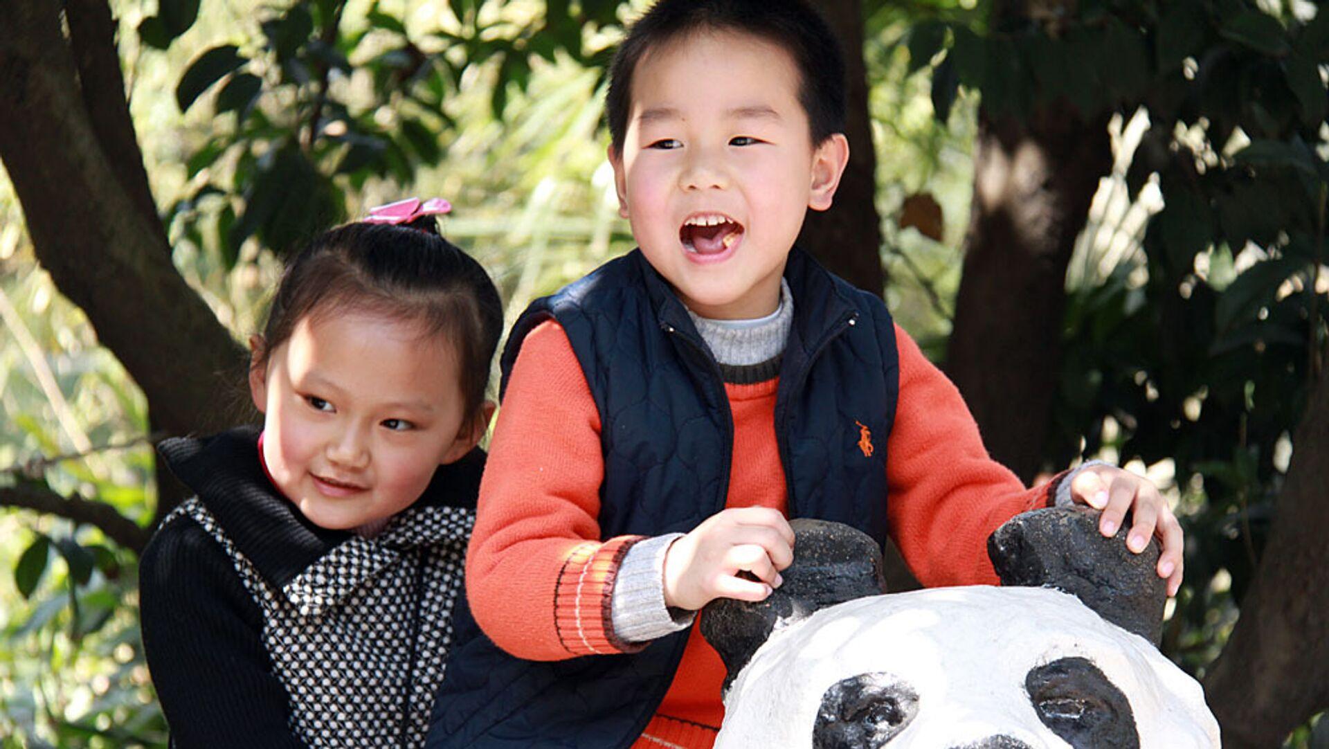 Большие панды, привезенные в Шанхай на период Всемирной универсальной выставки ЭКСПО-2010 - РИА Новости, 1920, 20.07.2021