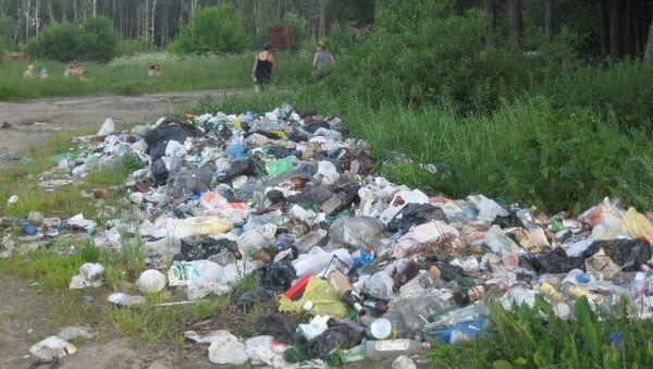 Несанкционированная свалка мусора. Архивное фото