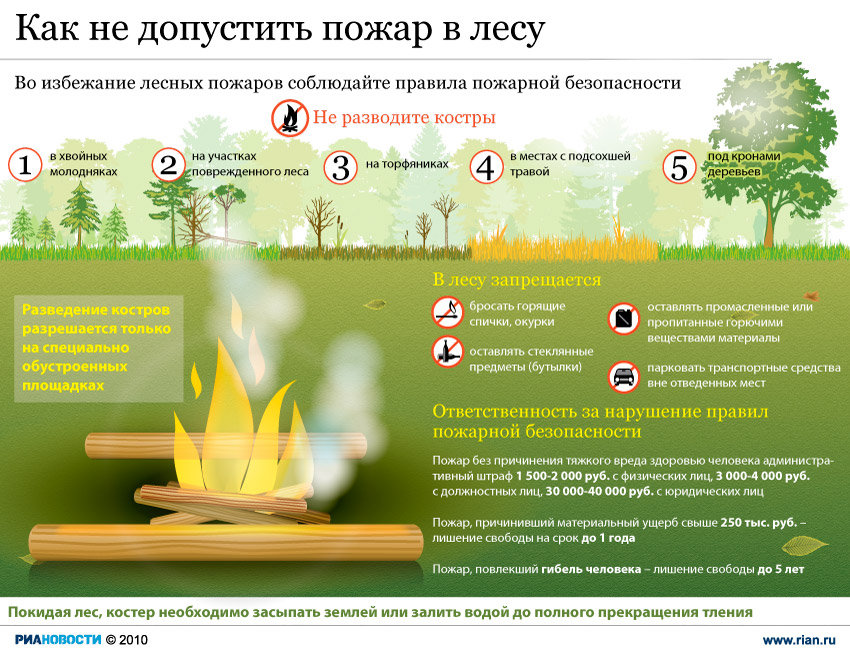 Как не допустить пожар в лесу