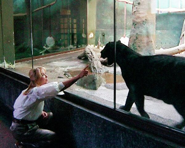 Москвичи променяли кошек и собак на ягуара и слона