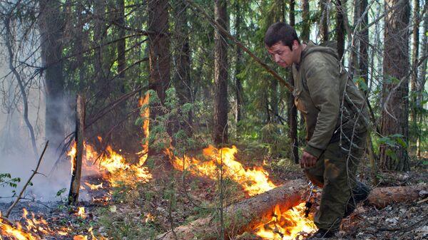 Тушение лесного пожара в Воротынском районе Нижегородской области