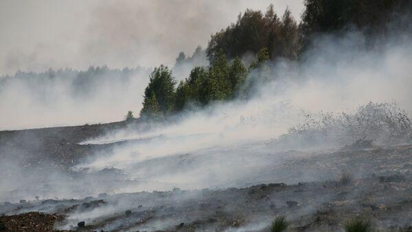 Пожары торфяников в Подмосковье
