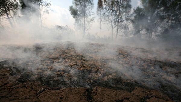 Торфяные пожары в Егорьевском районе Подмосковья. Архив