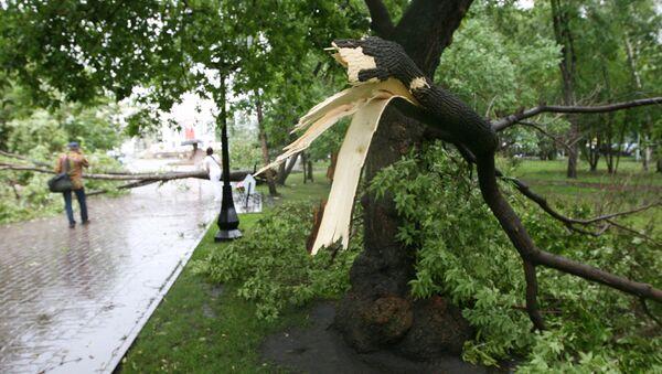 Последствия урагана. Архив